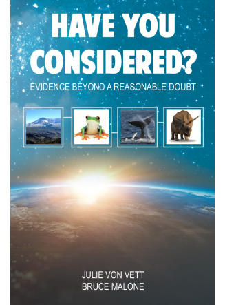 Have You Considered: Evidence Beyond a Reasonable Doubt
