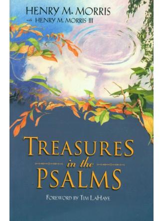 Treasures in the Psalms (eBook)
